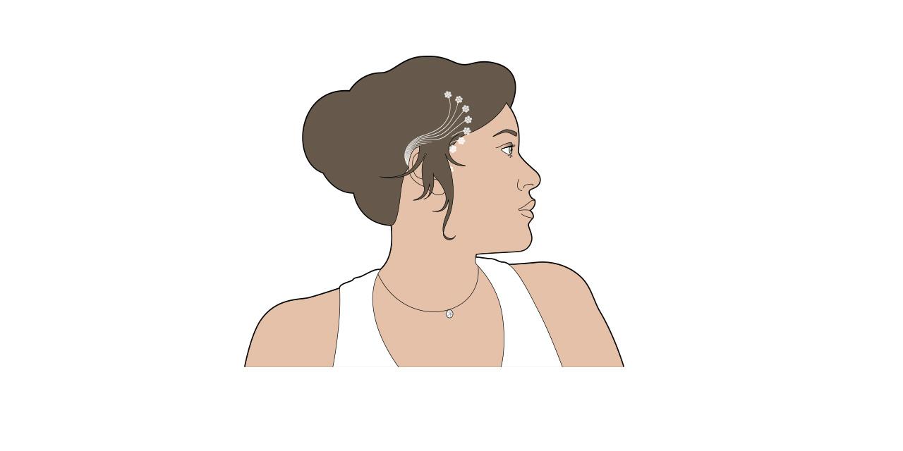 illustrations_vecto03